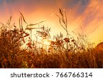 grass in front of a sunset | Shutterstock . vector #766766314