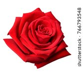 Stock photo beautiful red rose isolated on white background 766793548