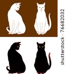 Two Cats Are Sitting. Black An...