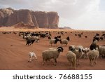 Herd of Bedouin sheep and goats in the Wadi Rum desert - stock photo