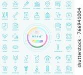 universal web and internet pet... | Shutterstock .eps vector #766941004