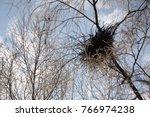 Crow's Nest Against The Sky