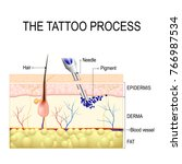 make a tattoo. how does it work ... | Shutterstock .eps vector #766987534