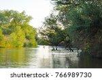 danube delta river landscape | Shutterstock . vector #766989730