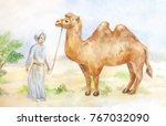 watercolor illustration of... | Shutterstock . vector #767032090