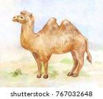 vintage watercolor illustration ...   Shutterstock . vector #767032648