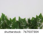 top view of green leaves on... | Shutterstock . vector #767037304