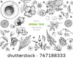 herbal tea shop frame vector... | Shutterstock .eps vector #767188333