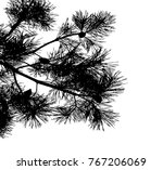 realistic pine tree silhouette  ... | Shutterstock .eps vector #767206069