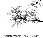 realistic branch tree... | Shutterstock .eps vector #767212489