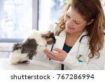 young female veterinarian... | Shutterstock . vector #767286994