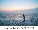 seaside tourist scenery   Shutterstock . vector #767289574