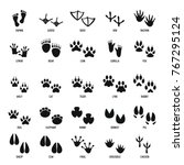 animal footprint icons set.... | Shutterstock .eps vector #767295124