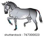 gray horse in training. | Shutterstock .eps vector #767300023