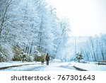 woman walk with dog by snowed...   Shutterstock . vector #767301643