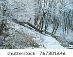 the stairs are covered in snow... | Shutterstock . vector #767301646