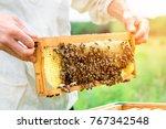 beekeeper holding a honeycomb... | Shutterstock . vector #767342548