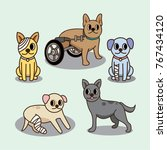 cat and dog injured character... | Shutterstock .eps vector #767434120