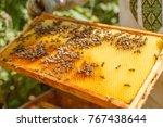 closeup portrait of beekeeper...   Shutterstock . vector #767438644