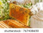closeup portrait of beekeeper...   Shutterstock . vector #767438650