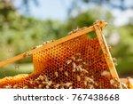 closeup portrait of beekeeper... | Shutterstock . vector #767438668