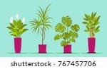 set of office plants in pots. ... | Shutterstock .eps vector #767457706