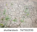 Crack Dry Mud Soil And Grass...