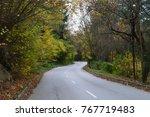autumn fairytale in the park... | Shutterstock . vector #767719483