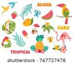 big set of tropical birds and... | Shutterstock .eps vector #767727478