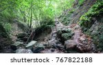 mountain river in the forest | Shutterstock . vector #767822188