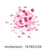 pink rose petals pile vector... | Shutterstock .eps vector #767831158