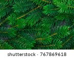 background a texture furry tree ... | Shutterstock . vector #767869618
