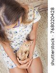 Stock photo girl with a favorite kitten young beautiful girl is holding a red kitten girl with long hair 768020428