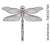black dragonfly aeschna viridls ...   Shutterstock .eps vector #768132760