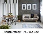multifunctional monochromatic... | Shutterstock . vector #768165820