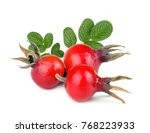 Rose Hip Berries With Leaves...