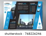 business brochure. flyer design.... | Shutterstock .eps vector #768226246