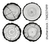 tree rings. mandala. set of... | Shutterstock .eps vector #768237499