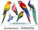 vector hand drawn collection of ... | Shutterstock .eps vector #768266056
