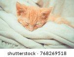 Stock photo little red kitten cat lies on the fluffy carpet at home little kitten sleeps close up of 768269518