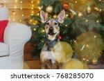 happy new year  christmas... | Shutterstock . vector #768285070