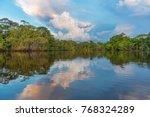 sunset reflection along the... | Shutterstock . vector #768324289