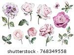 set watercolor elements of... | Shutterstock . vector #768349558