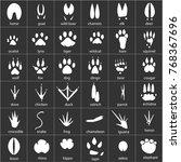 vector set of animal  avian and ...   Shutterstock .eps vector #768367696