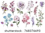 Stock photo set watercolor elements of garden flowers collection branches of flowers botanic illustration 768376693
