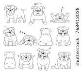 bulldog elements line drawing  | Shutterstock .eps vector #768413038