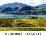 view of grape vineyards... | Shutterstock . vector #768427168