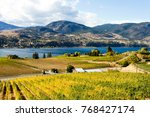 view of grape vineyards... | Shutterstock . vector #768427174