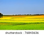 landscape | Shutterstock . vector #76843636
