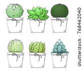 sketch of succulents in pots.... | Shutterstock .eps vector #768462040